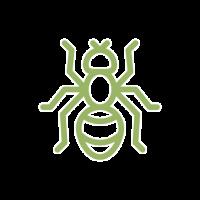 bekæmpelse af myrer